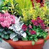 Pour vos fleurs  à la Toussaint, ayez le réflexe Décor'Jardin !