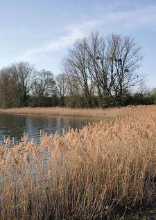 Domaine de Lindre: passion nature