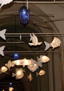 Des poissons volants pour Saint-Nicolas