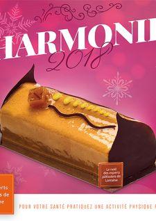 Les Experts Pâtissiers de Lorraine en harmonie