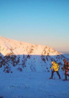 Verticales Vosges: l'exploration en pleine nature