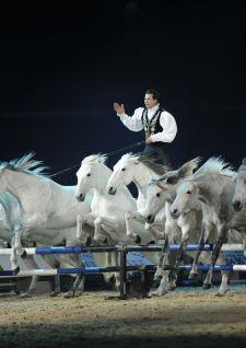 Thillombois monte sur ses grands chevaux