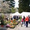 26e Marché aux Fleurs et à la décoration de jardin à Rodemack