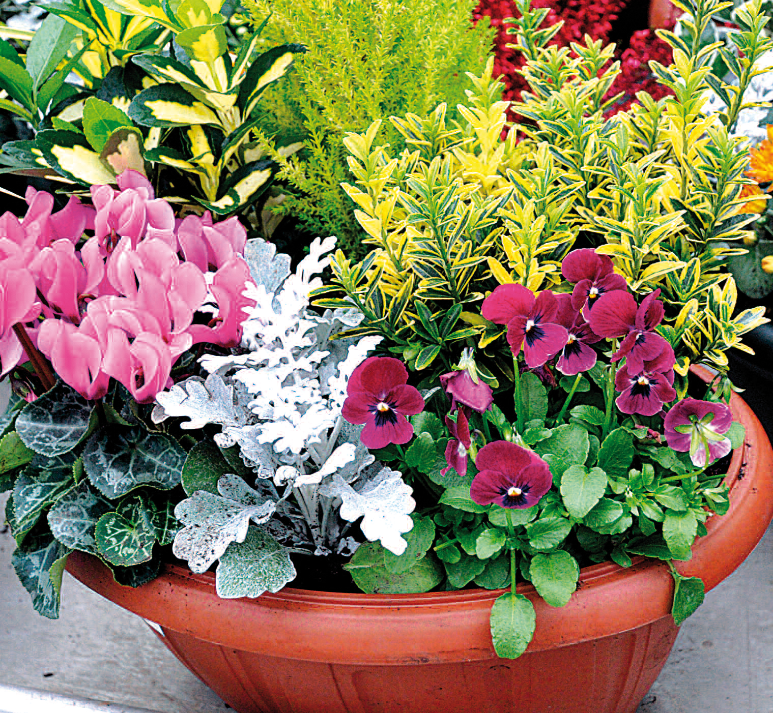 Pour vos fleurs la toussaint ayez le r flexe d cor for Decor de jardin photo