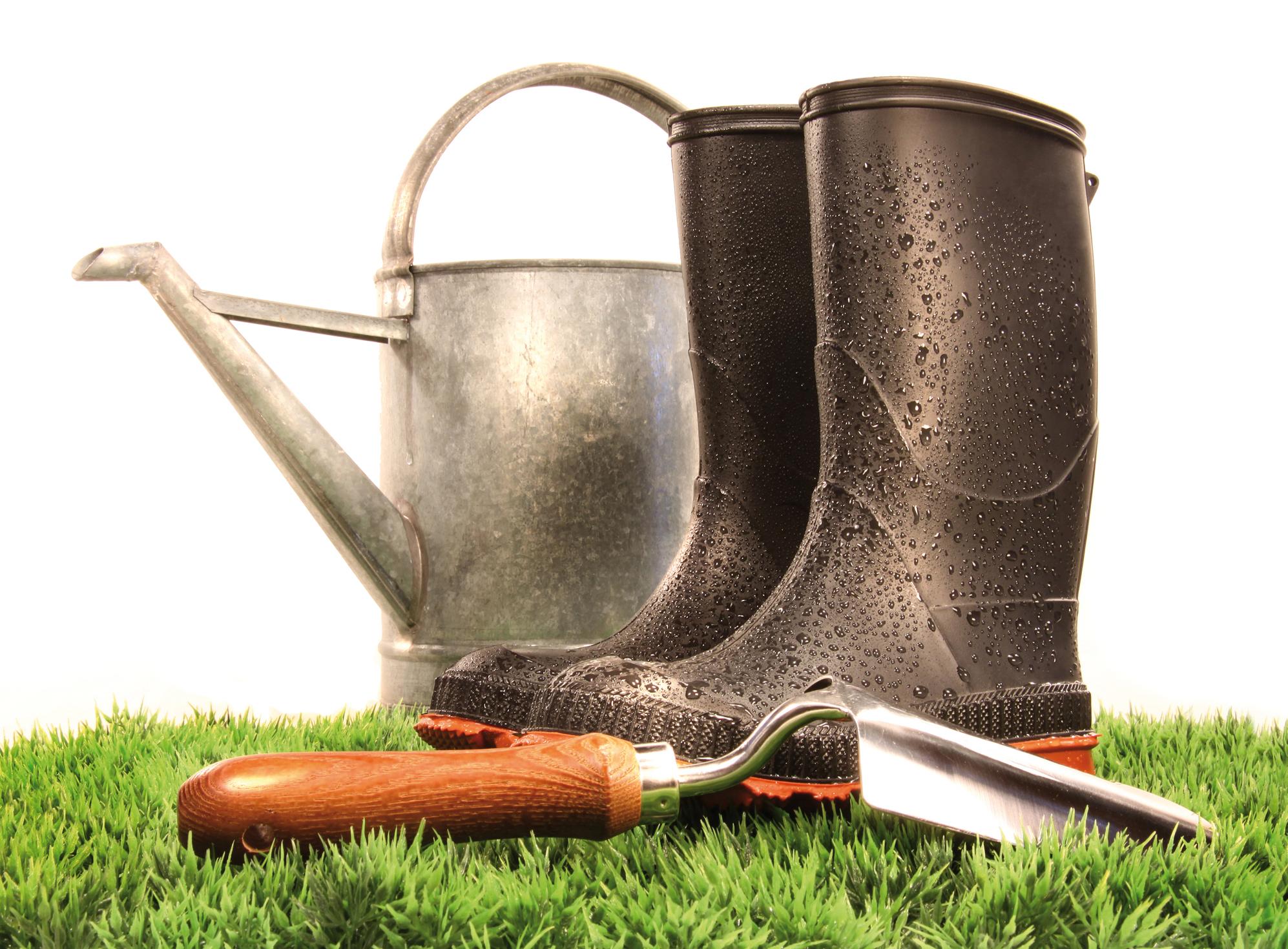 Jardinage avoir la main verte et cologique lorraine magazine - Avoir la main verte ...