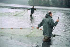 Regarder en ligne sans enregistrement de vidéo la pêche sur