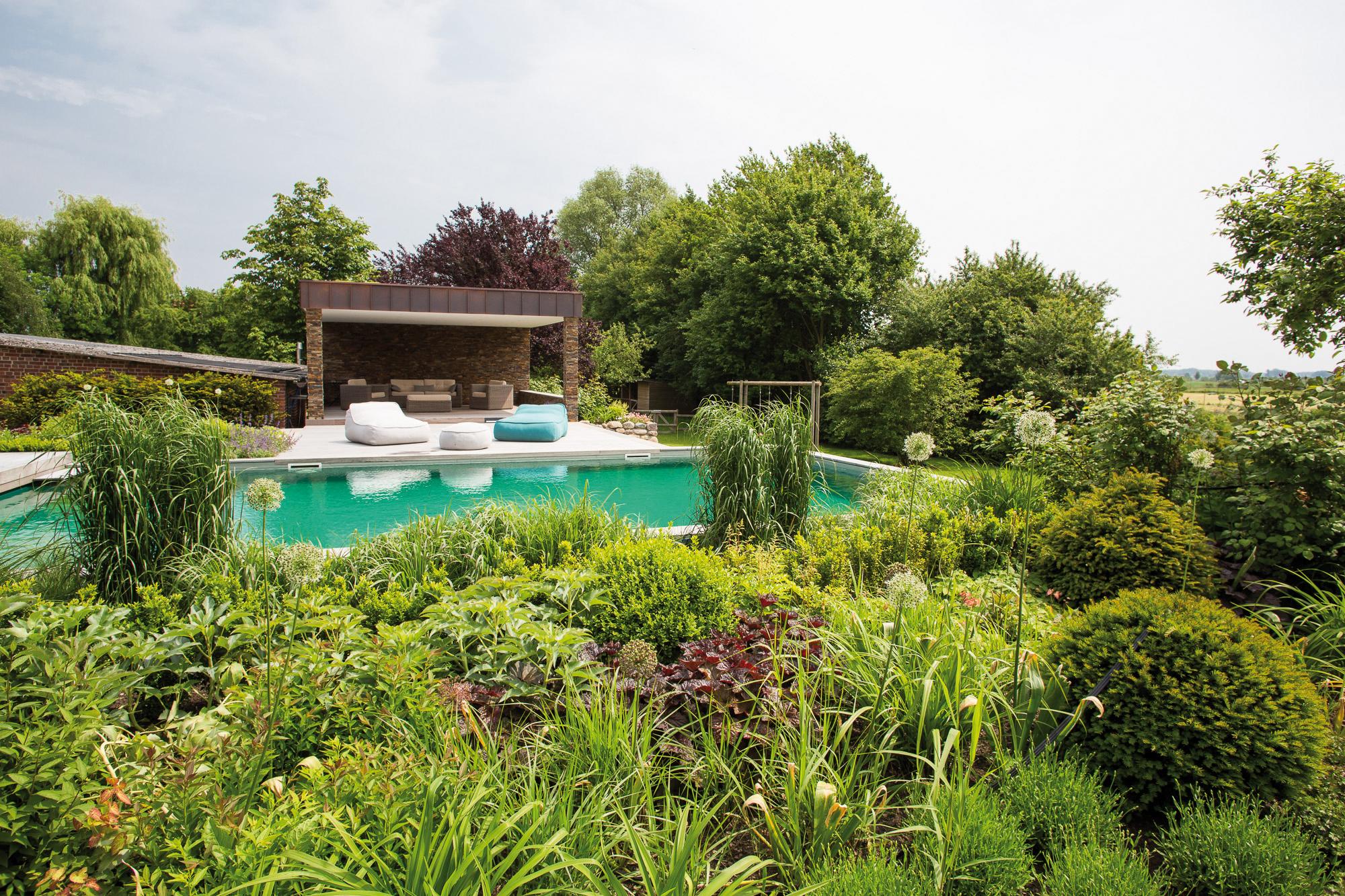 Tout savoir sur la baignade biologique lorraine magazine for Combien coute une piscine naturelle