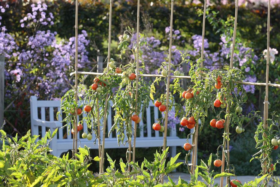 La lorraine en son jardin lorraine magazine for Jardin des sens saigon