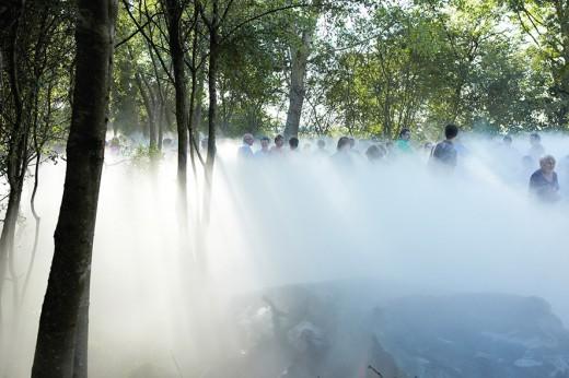 Moss Garden Nicey-sur-Aire, Fujiko Nakaya, coprod. Le Vent des Forêts-Frac Lorraine 2011_crédit Sébastien Agnetti (16)