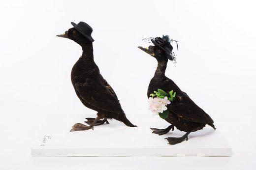 Oeuvres de Gilbert Coqalane par Arno Paul