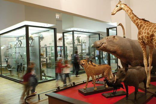 museum-aquarium-nancy-ville-de-nancy