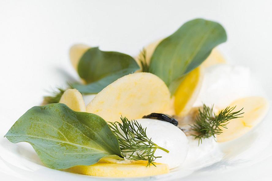 Caviar d'Oursin en Crème légère, concombre en coque de pain grillé, Olives noires torréfiées, Granité Aneth © Laurence Fourrière
